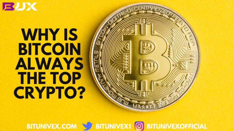 Bitcoin is always the top crypto. Ever wonder why?