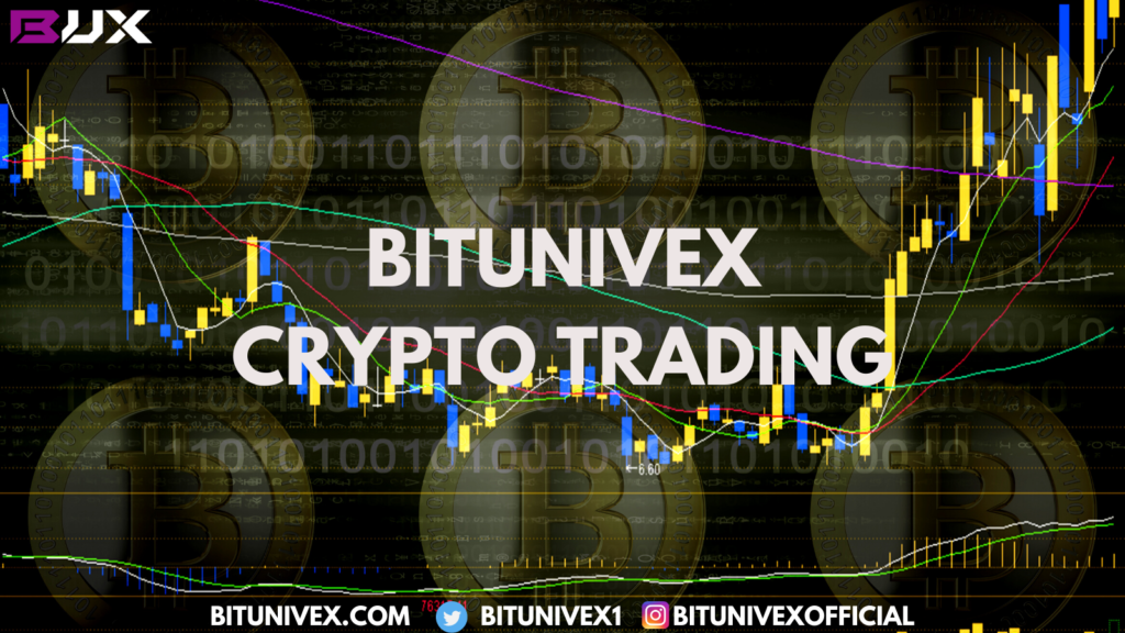 BITUNIVEX.COM offers a lot of different instruments and tools for crypto trading.