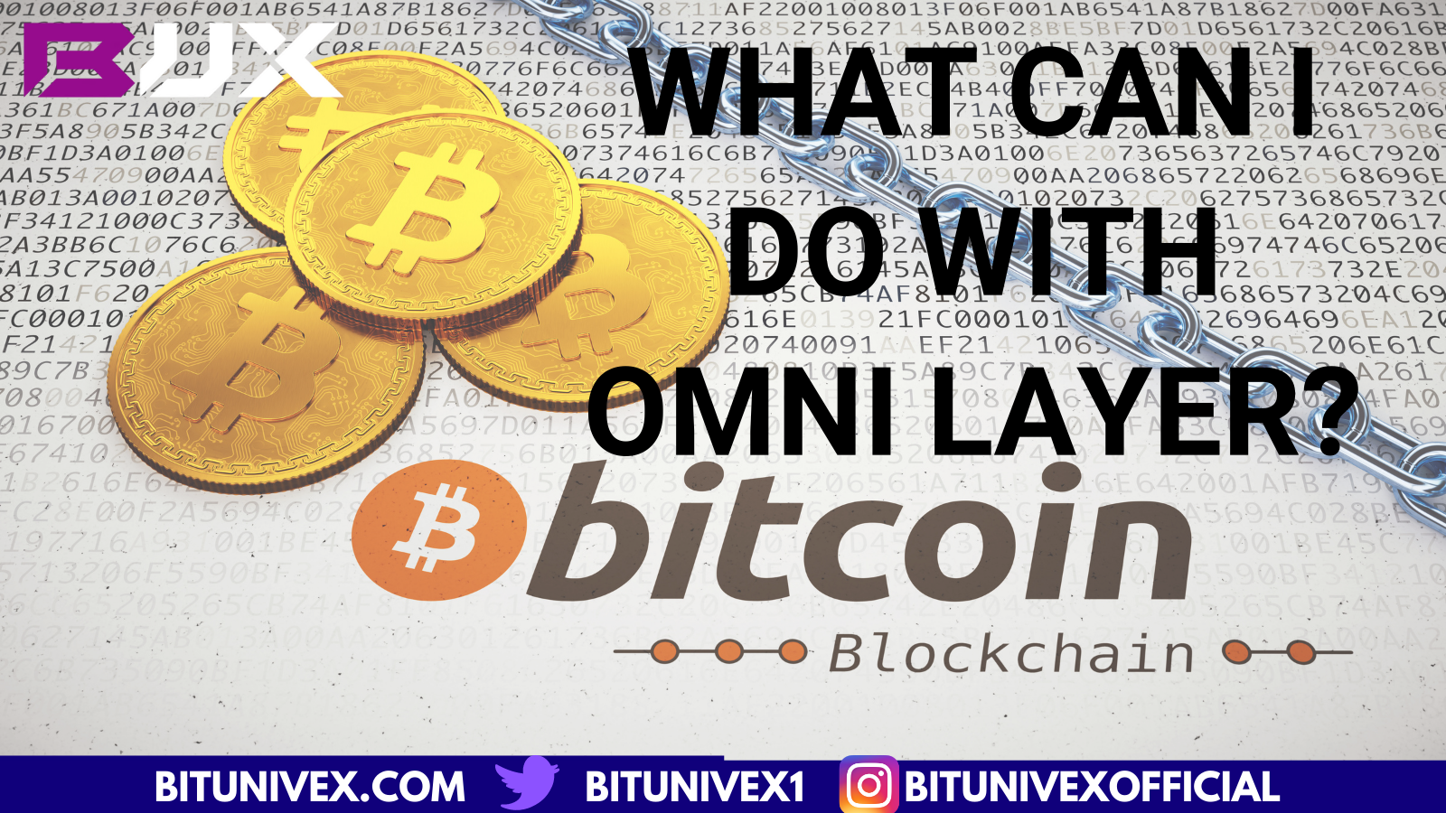 What is Omni Layer ?