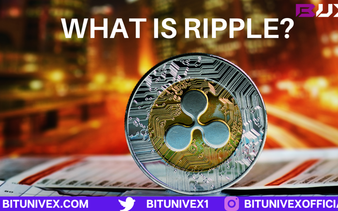 Where did ripple come from?