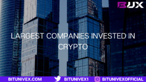 Largest companies invested in crypto